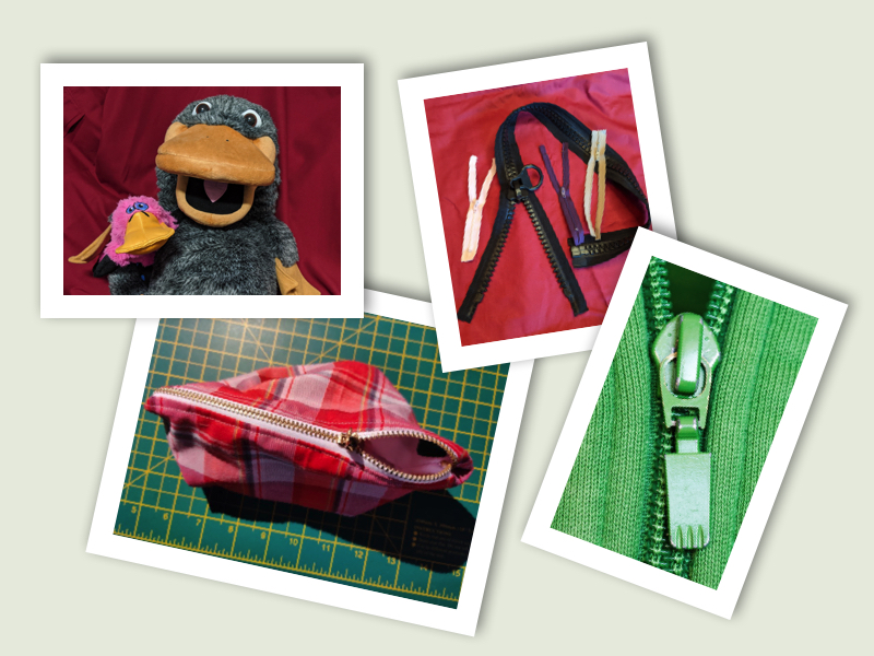 Picture of four photos. First in Theo the puppet platypus holding Anno the pink Platypus toy. The second is a selection of different zips, the next is a zip up pencil case and the last is a zip on a green zoodie.